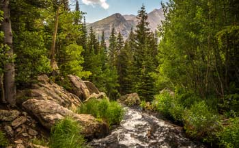A stream in Rocky Mountain National Park.