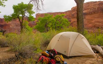 A tent on a Bad Adventures trip in the Green River's Labyrinth Canyon.